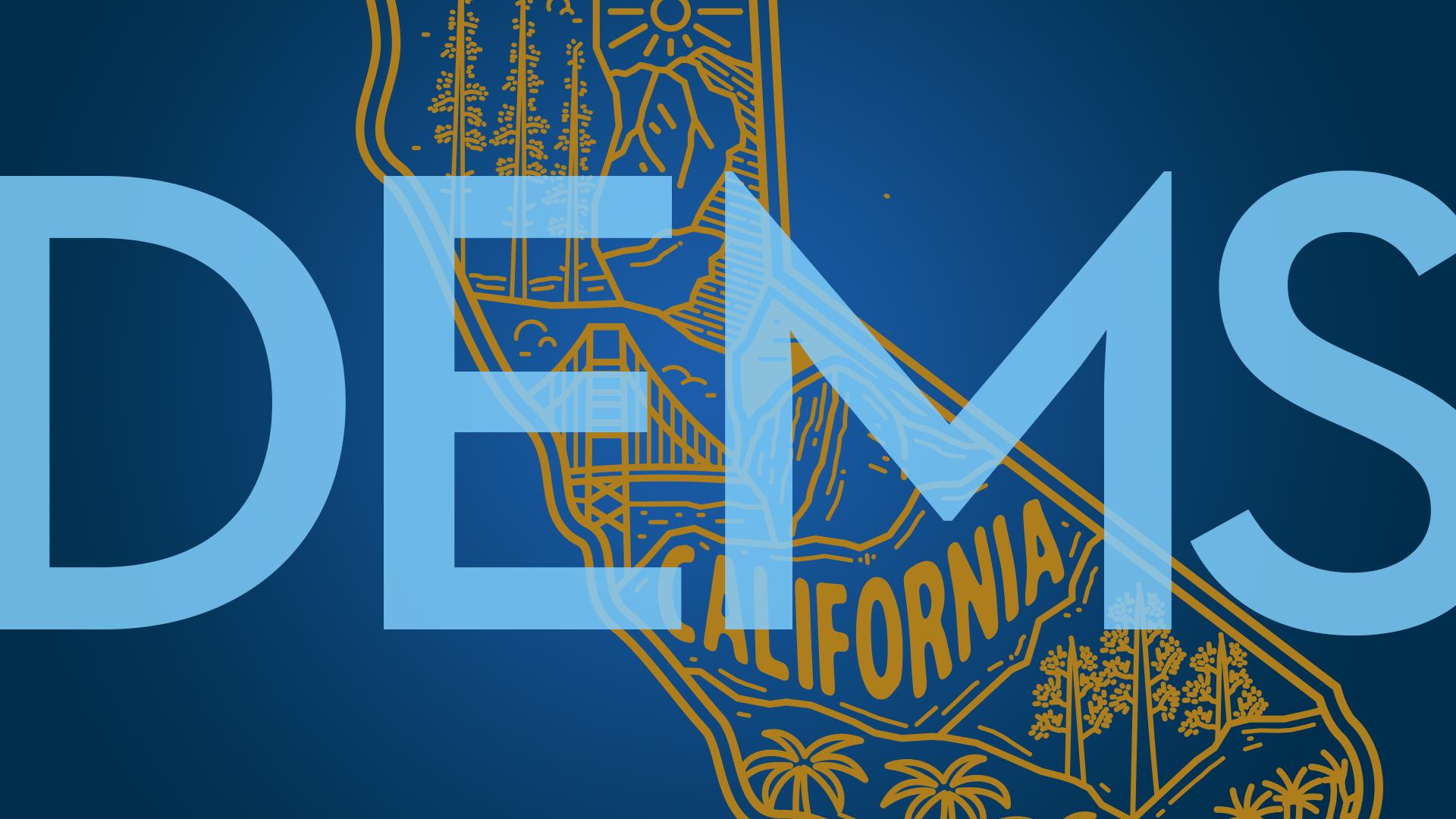 CA Dems 2021 Election Endorsements